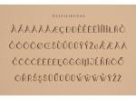 Boldatin Font Family