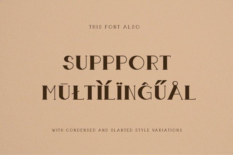 Boldatin Caps Font Family by Patria Ari-12