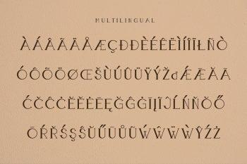 Boldatin Caps Font Family by Patria Ari-13