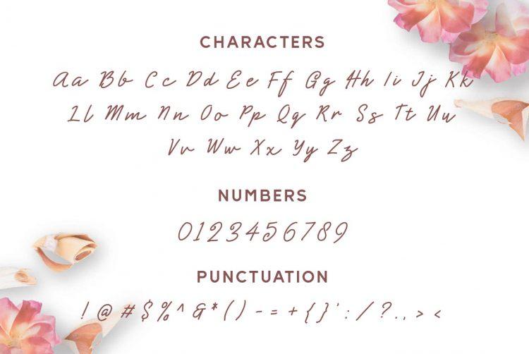 shearlight script mock up-07